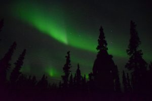 Northern lights in Alaska outside of Denali